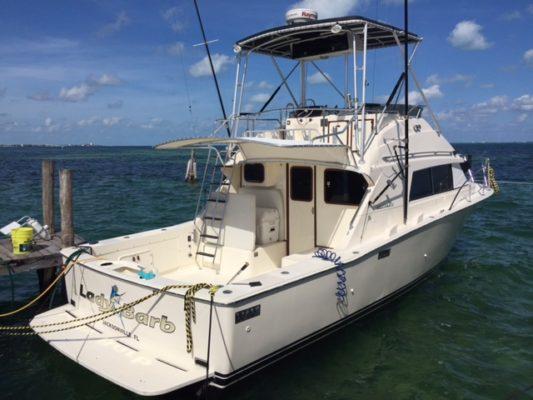 Renta de Bote para pesca en los cabos