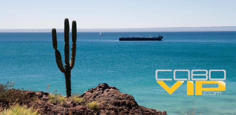 Renta de Yates y veleros baratos en La Paz